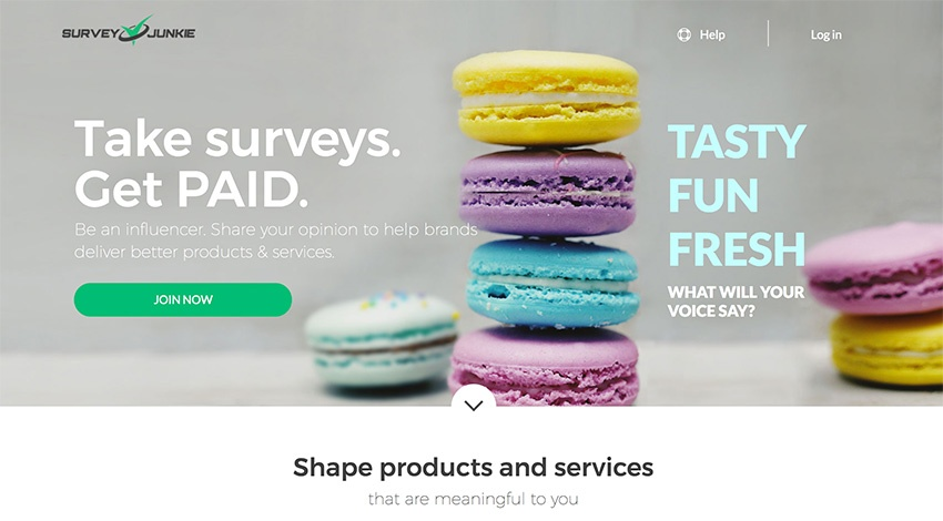 Survey Junkie Paid Surveys