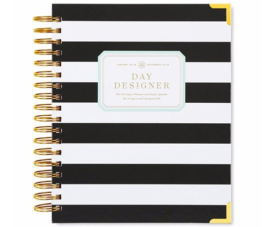 day designer flagship daily planner
