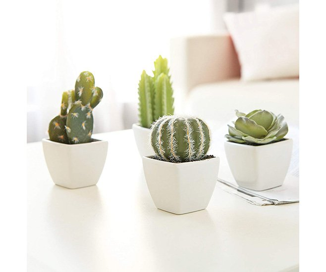 Mini Artificial Cactus in Cubed Pots