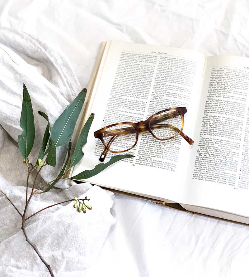 glasses and a plant on a book